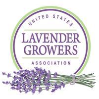 lavender certificate